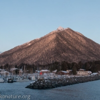 Mt. Verstovia from Crescent Harbor