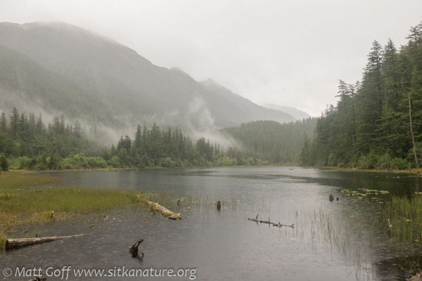 Thimbleberry Lake