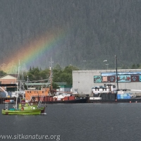 Channel Rainbow