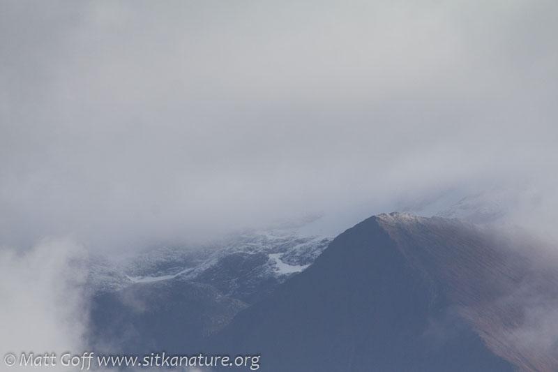 Bear Mountain Termination Dust