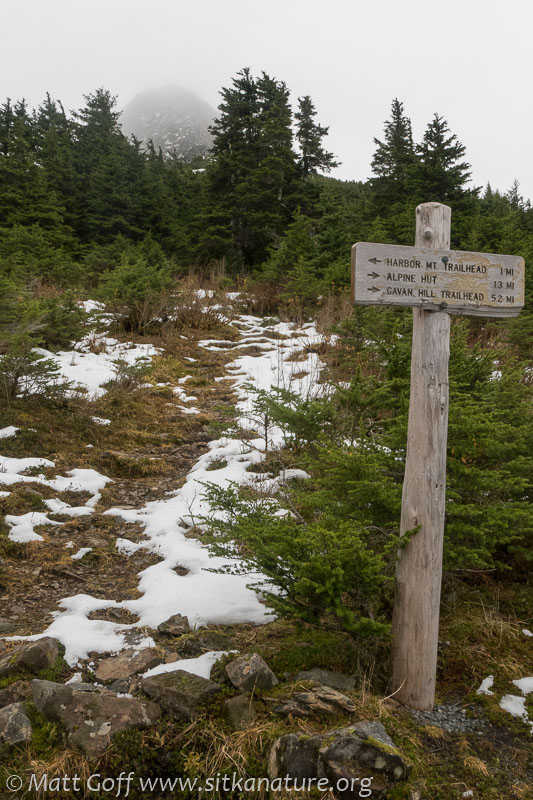 Harbor Mountain Trail Sign