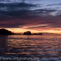 New Year's Sunset
