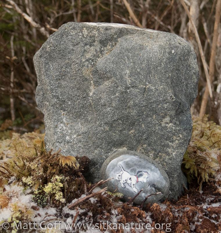 Sitka Rocks