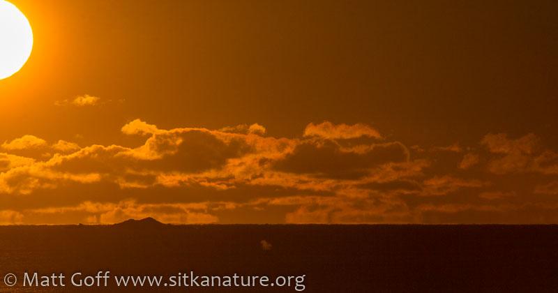 Mid-Afternoon Sun