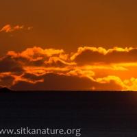 Kulichkof Sunset