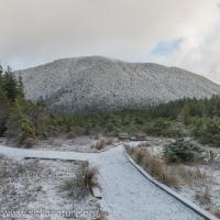 Gavan Hill View