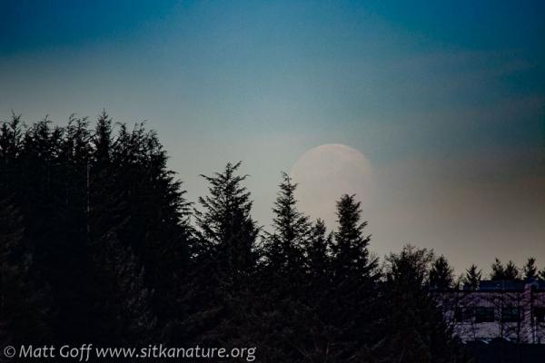 Setting Full Moon
