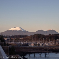 Mt. Edgecumbe
