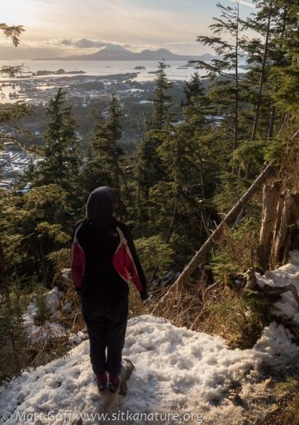 Rowan at First Viewpoint