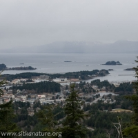 Mt. Edgecumbe Obscured
