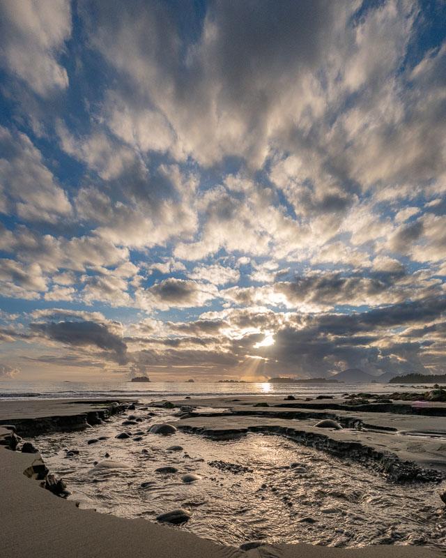 Sandy Beach: An Aspiring Naturalist