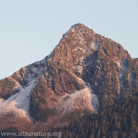 Arrowhead Peak of Verstovia