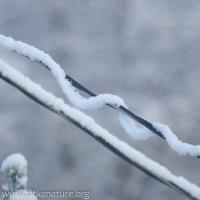 Snow Rope