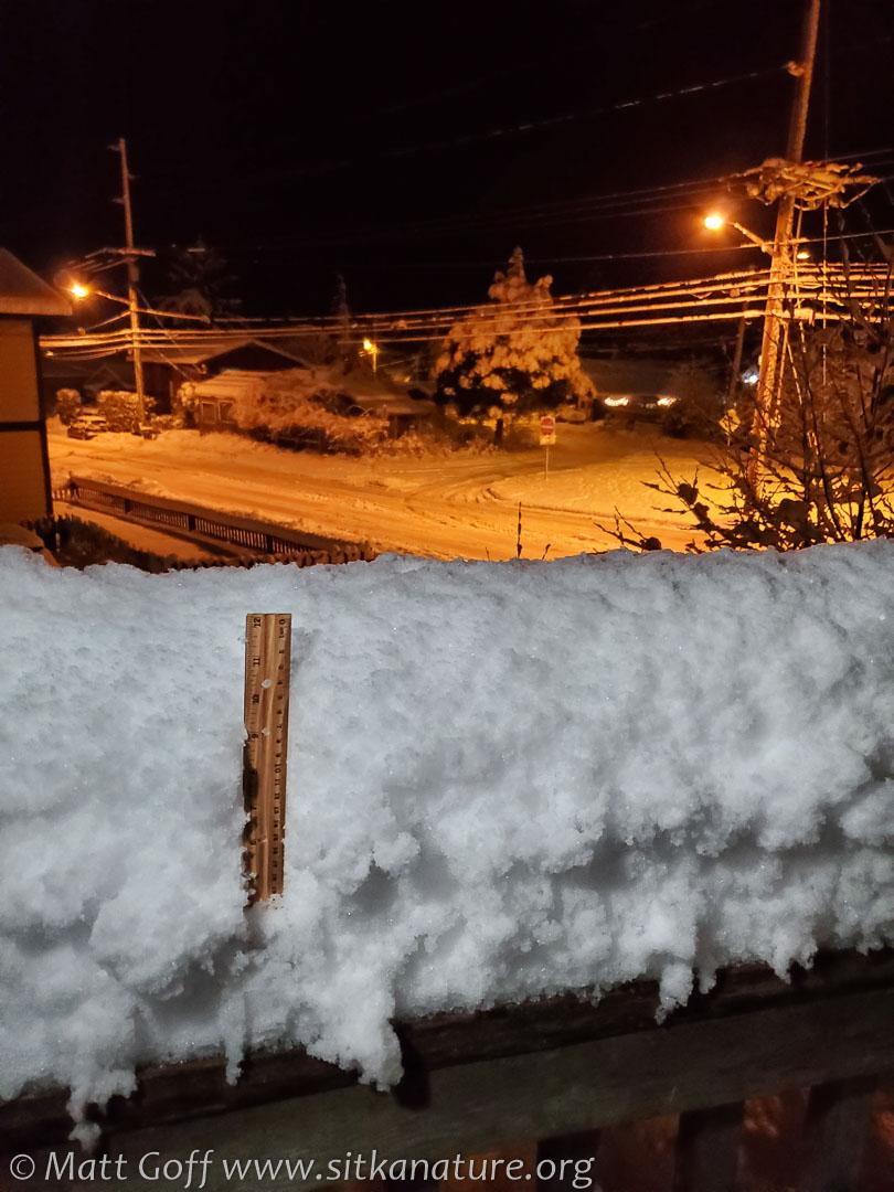 Deck railing snow depth