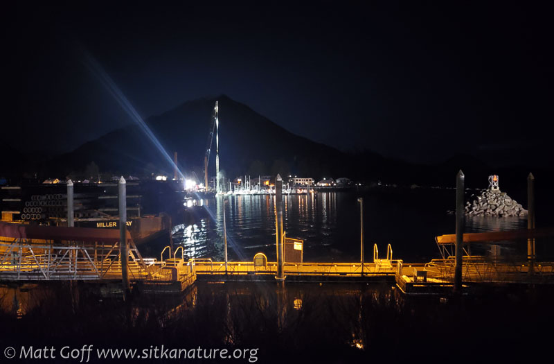 Crescent Harbor Work at Night