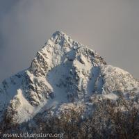 Verstovia (Arrowhead Peak)
