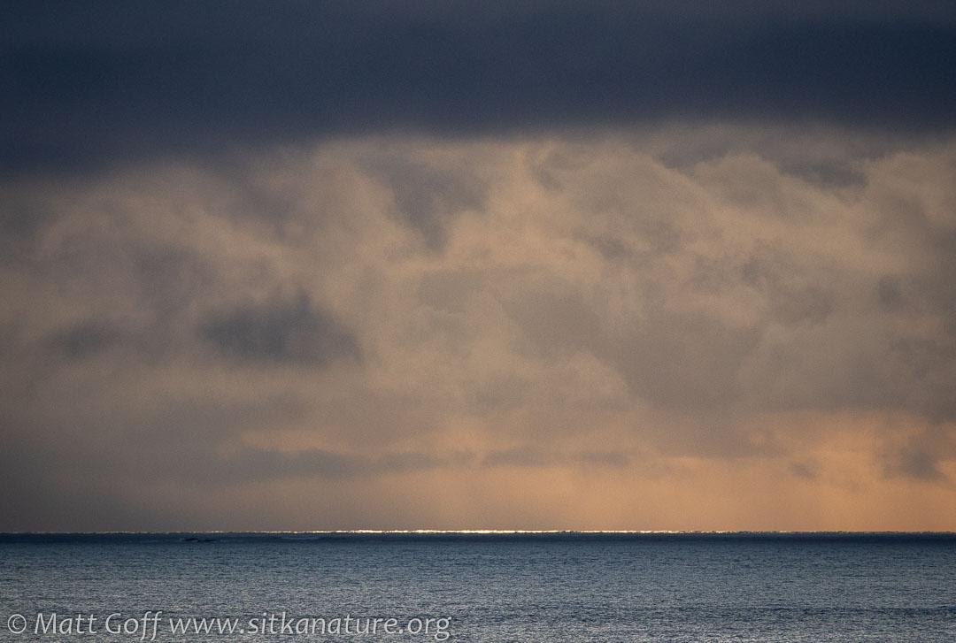 Bright Line on Sitka Sound