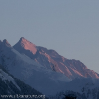Morning alpenglow on Peak 4900