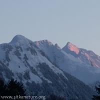 Morning alpenglow on Peak 4900