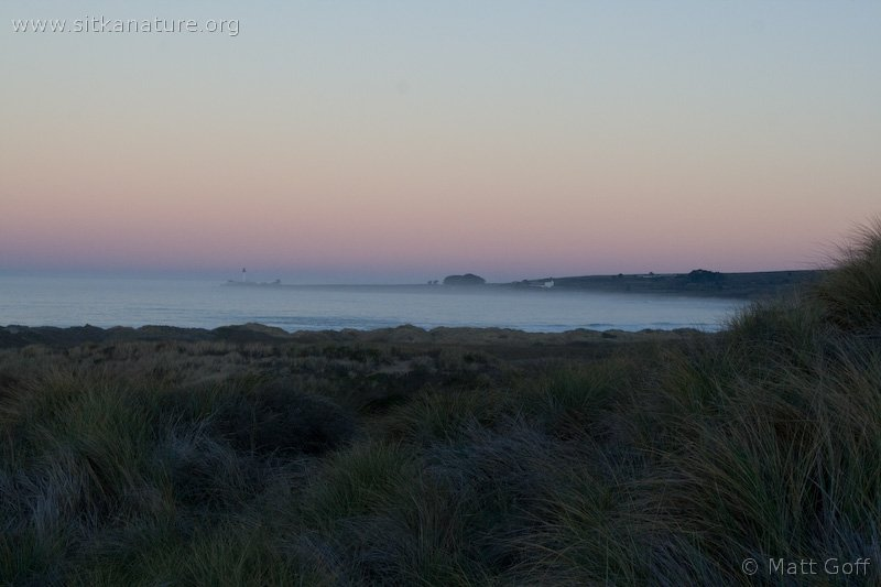 Sunrise on Coast