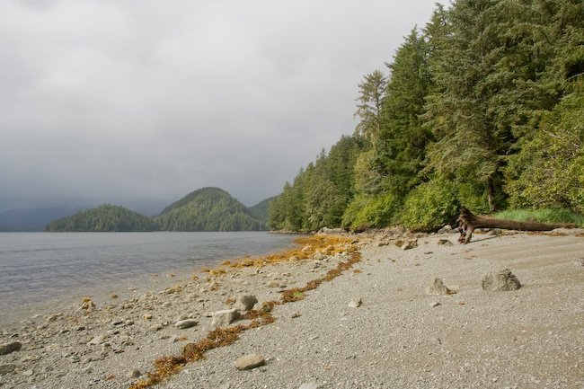 Beach on Trail to Mosquito Cove
